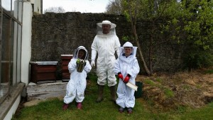Beginners Beekeeping Course Kilkenny