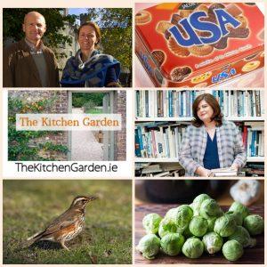 Kitchen Garden 9th November 2018