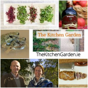 Kitchen Garden 220219
